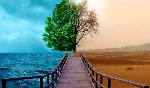 ¿Qué es la muerte? ¿Qué es la vida? · Reflexión de noviembre de 2016