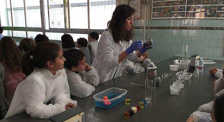 Semana Ecológica en el colegio La Salle de Paterna
