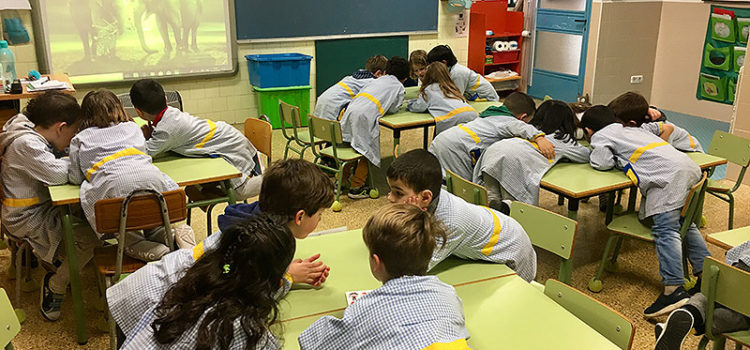 Treball a sisè d'Infantil de La Salle Manacor amb el programa CREA d'innovació de La Salle