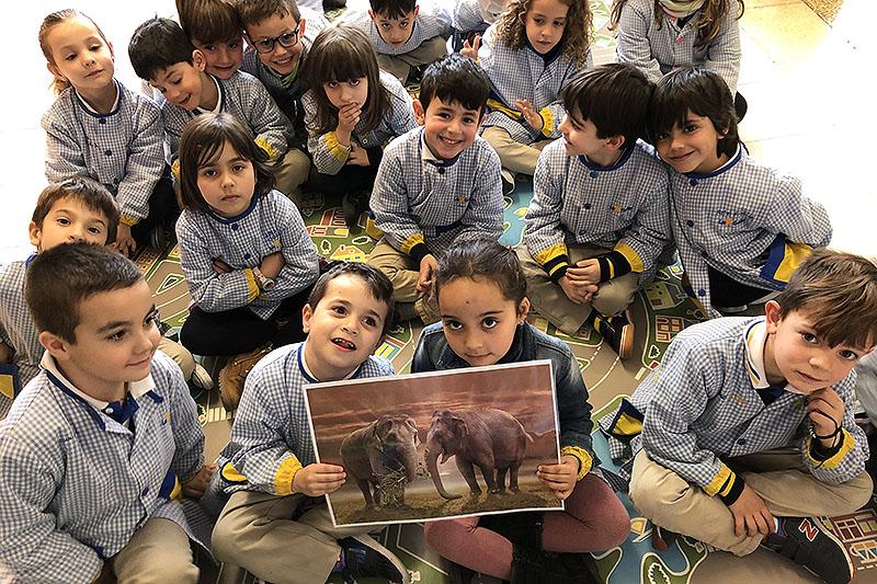 La Salle Manacor i el desenvolupament del programa CREA per a Infantil de La Salle